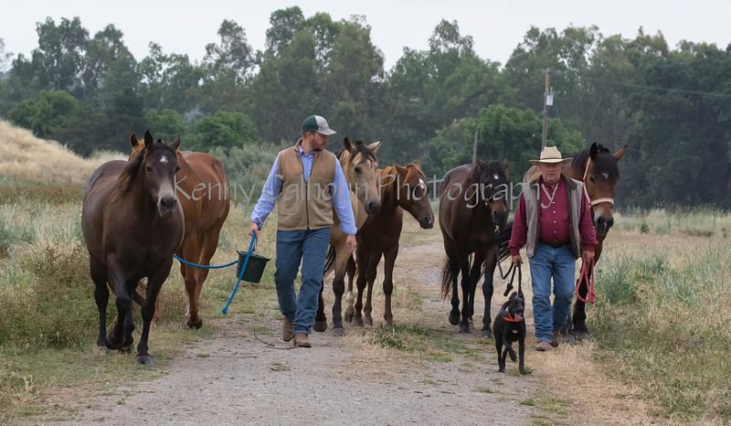 5-25-19 Smith Ranch-7945