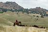 5-25-19 Smith Ranch-8766