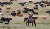 5-25-19 Smith Ranch-8645