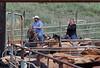 5-25-19 Smith Ranch-8905