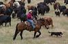 5-25-19 Smith Ranch-8686