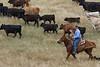 5-25-19 Smith Ranch-8684