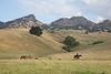 5-25-19 Smith Ranch-2805