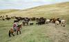 5-25-19 Smith Ranch-3450