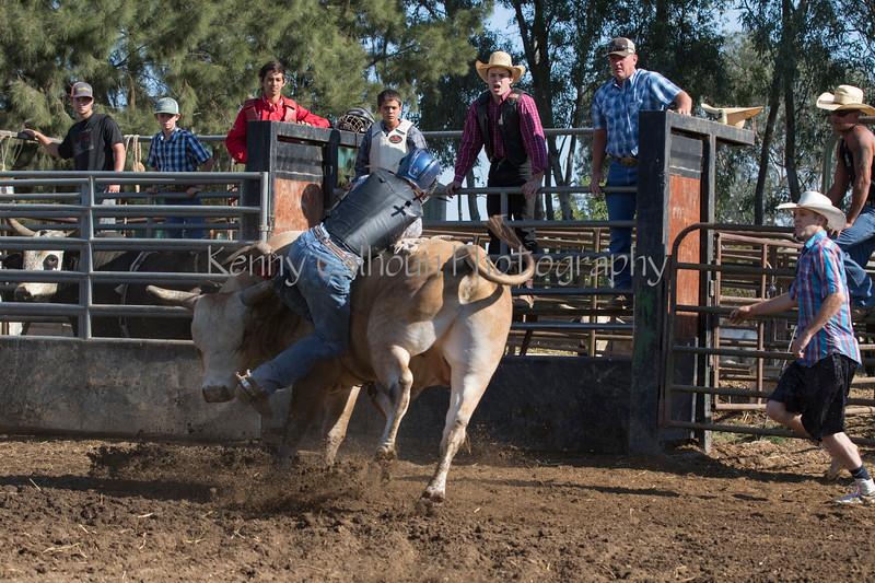6-25 Steinmetz Bucking Stock951A2936