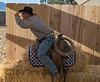 Ca  Rangeland Trust_N5A7001