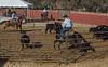 Ca  Rangeland Trust_N5A5461
