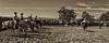 Ca  Rangeland Trust_N5A5793-Edit