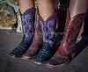 11-7-14 CRT Hearst Ranch_N5A9603