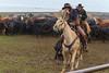Pete_Craig_Branding_12-15_December_15,_2012IMG_3586untitled