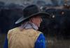 Pete_Craig_Branding_12-15_December_15,_2012IMG_3888untitled