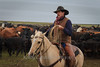 Pete_Craig_Branding_12-15_December_14,_2012IMG_3528untitled