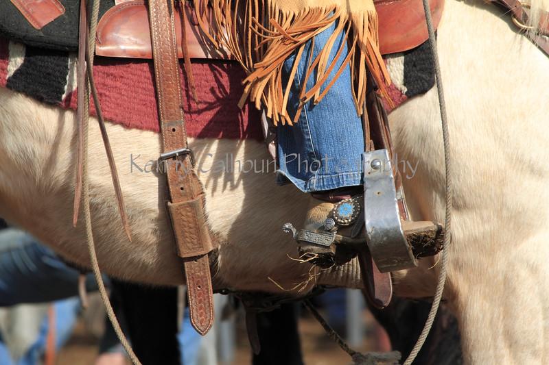 IMG_9082YoloLand&Cattle