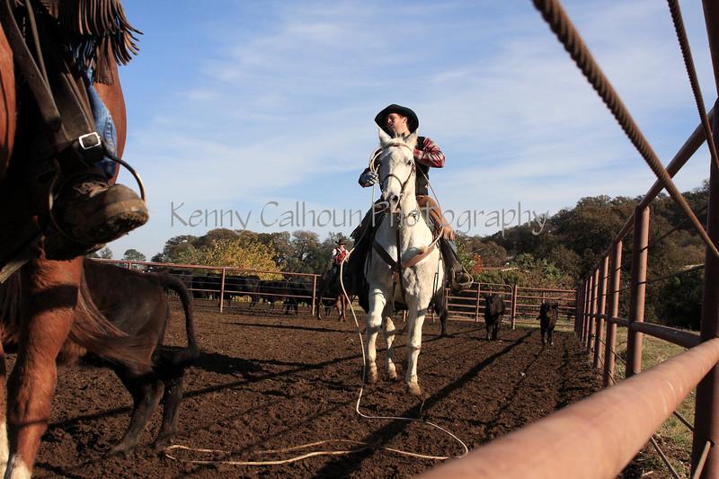 IMG_6138Yolo Land & Cattle