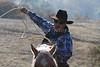 IMG_9185YoloLand&Cattle