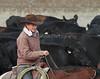 IMG_8671YoloLand&Cattle