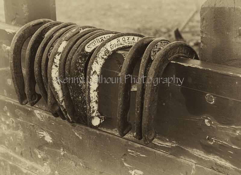 Yolo Land & Cattle 1-3-2014_N5A0477-Edit