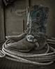 Yolo Land & Cattle 1-3-2014_N5A0533-Edit-Edit