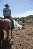Yolo Land and Cattle 2014_N5A4109