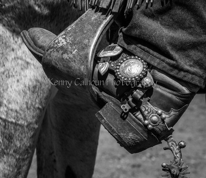 Yolo Land and Cattle 2014IMG_4961-2