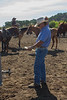 Yolo Land and Cattle 2014_N5A3961