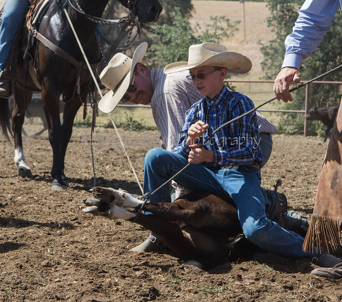 Yolo Land and Cattle 2014_N5A4185