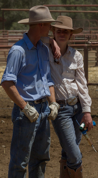 Yolo Land and Cattle 2014IMG_5153
