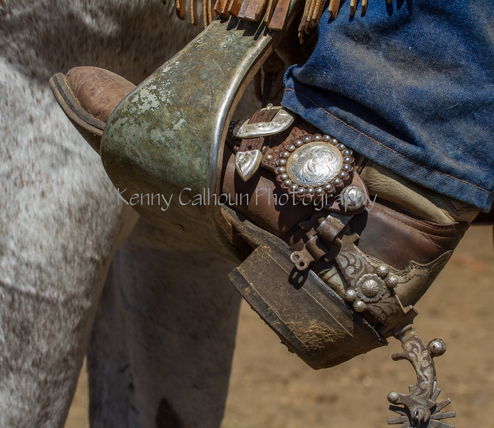 Yolo Land and Cattle 2014IMG_4961