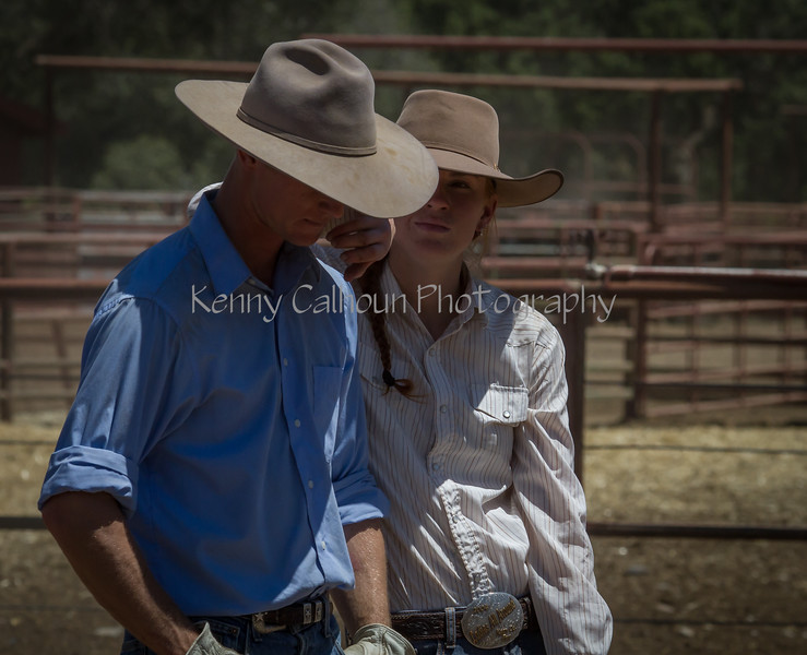 Yolo Land and Cattle 2014IMG_5152