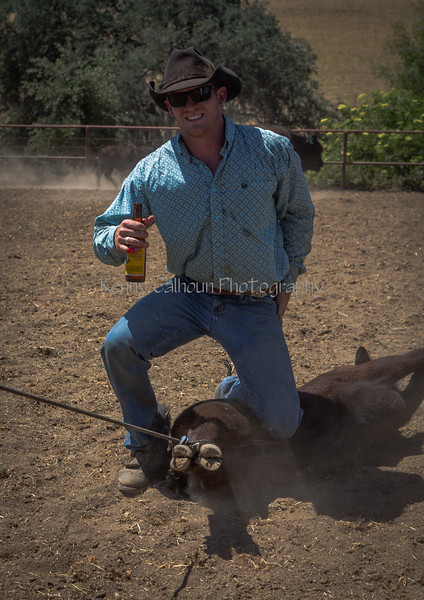 Yolo Land and Cattle 2014_N5A4530