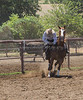 Yolo Land and Cattle 2014_N5A4428