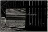 YL&C_11-25-12November_25,_2012IMG_3229untitled-2