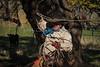 YL&C_11-25-12November_24,_2012IMG_3026untitled