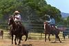 April_28,_2012IMG_0385untitledYolo_Land_&_Cattle_4-29-12