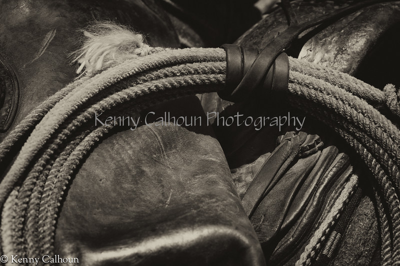 April_28,_2012IMG_9665untitledYolo_Land_&_Cattle_4-29-12-2