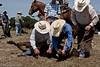 April_29,_2012IMG_8707untitledYolo_Land_&_Cattle_4-29-12