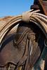 April_29,_2012IMG_8453untitledYolo_Land_&_Cattle_4-29-12-3