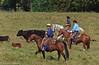 April_28,_2012IMG_9452untitledYolo_Land_&_Cattle_4-29-12