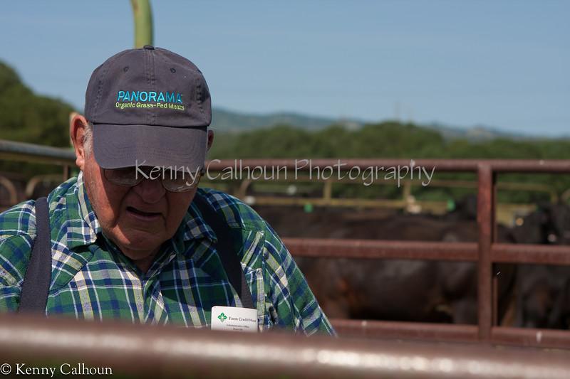 April_29,_2012IMG_8587untitledYolo_Land_&_Cattle_4-29-12