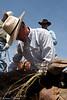 April_29,_2012IMG_8696untitledYolo_Land_&_Cattle_4-29-12