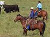 April_28,_2012IMG_9465untitledYolo_Land_&_Cattle_4-29-12