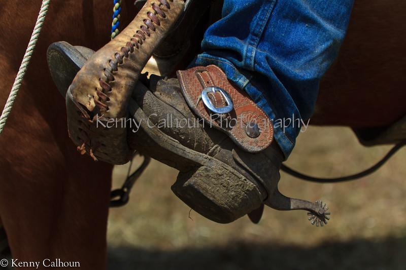 April_28,_2012IMG_0011untitledYolo_Land_&_Cattle_4-29-12-3