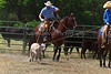 April_28,_2012IMG_0357untitledYolo_Land_&_Cattle_4-29-12