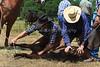 April_28,_2012IMG_9999untitledYolo_Land_&_Cattle_4-29-12