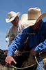 April_29,_2012IMG_8692untitledYolo_Land_&_Cattle_4-29-12