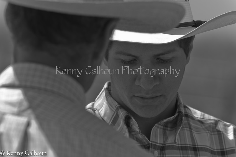 April_28,_2012IMG_9698untitledYolo_Land_&_Cattle_4-29-12