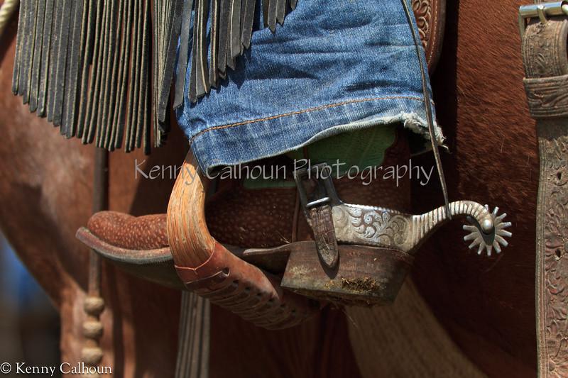 April_28,_2012IMG_9786untitledYolo_Land_&_Cattle_4-29-12
