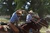 April_28,_2012IMG_0545untitledYolo_Land_&_Cattle_4-29-12