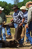 April_28,_2012IMG_0443untitledYolo_Land_&_Cattle_4-29-12