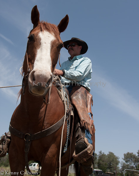 April_29,_2012IMG_8843untitledYolo_Land_&_Cattle_4-29-12-3